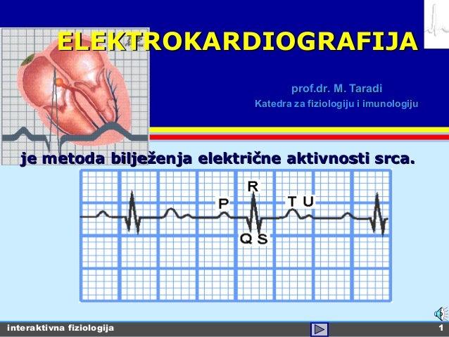 interaktivna fiziologija 1 prof.drprof.dr.. M. TaradiM. Taradi Katedra za fiziologiju i imunologijuKatedra za fiziologiju ...