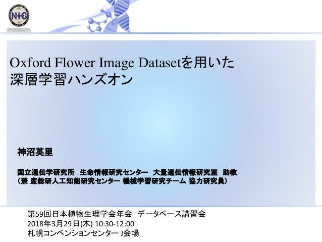 Oxford Flower Image Datasetを用いた 深層学習ハンズオン 神沼英里 国立遺伝学研究所 生命情報研究センター 大量遺伝情報研究室 助教 (兼 産総研人工知能研究センター 機械学習研究チーム 協力研究員) 第59回日本植物...