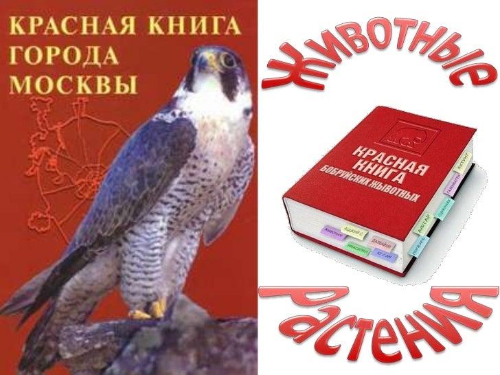 Встречается в Москве: Лосиный Остров,Измайлово                                        Среда обитания: Леса, Опушки леса
