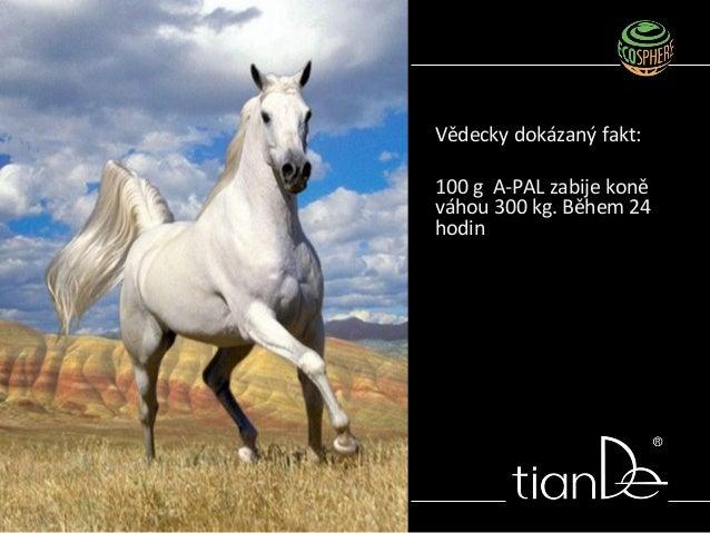 Vědecky dokázaný fakt: 100 g A-PAL zabije koně váhou 300 kg. Během 24 hodin
