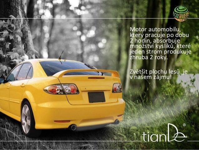 Motor automobilu, který pracuje po dobu 2 hodin, absorbuje množství kyslíků, které jeden strom produkuje zhruba 2 roky. Zv...