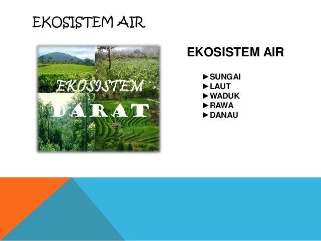 Ekosistem Darat & Air