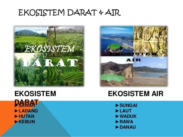 Ekosistem Darat Air