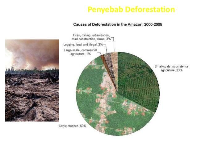Contoh Over Eksploitasi Ekosistem Di Indonesia Ikitoh