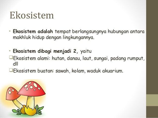 Ekosistem• Ekosistem adalah tempat berlangsungnya hubungan antara  makhluk hidup dengan lingkungannya.• Ekosistem dibagi m...