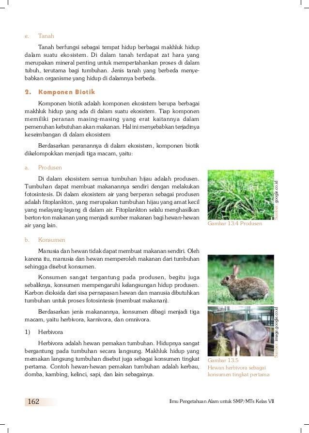 Ekosistem Buku 2