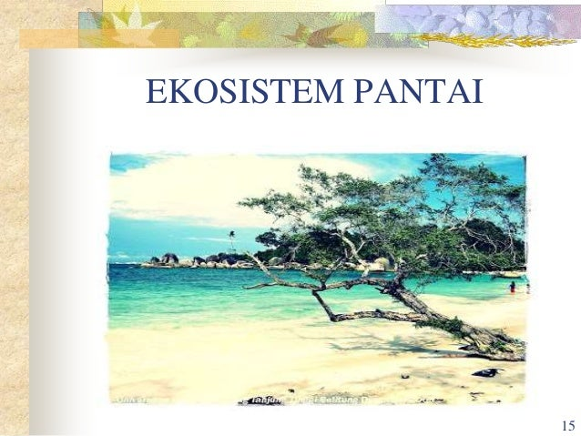 Ekosistem Laut Power Point