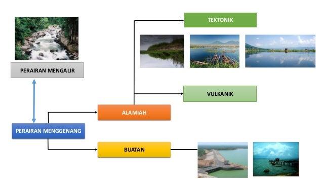 Ekosistem Perairan Menggenang