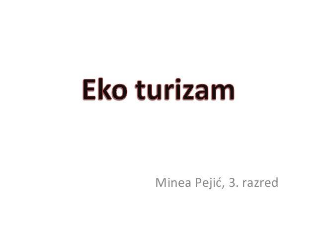 Minea Pejić, 3. razred