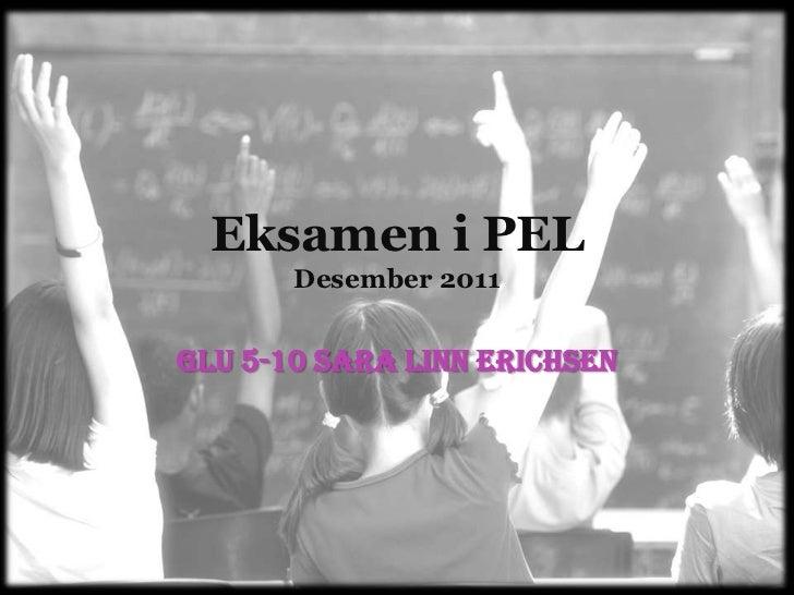 Eksamen i PEL       Desember 2011GLU 5-10 Sara Linn Erichsen