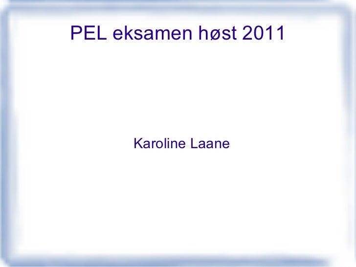 PEL eksamen høst 2011 Karoline Laane