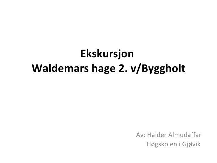 Ekskursjon   Waldemars hage 2. v/Byggholt    Av: Haider Almudaffar   Høgskolen i Gjøvik