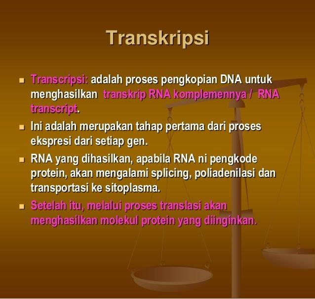 TRANSKRIPSI PROKARYOTE PDF