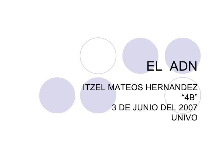 """EL  ADN ITZEL MATEOS HERNANDEZ """" 4B"""" 3 DE JUNIO DEL 2007 UNIVO"""