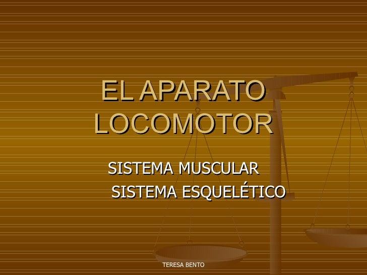 EL APARATO LOCOMOTOR SISTEMA MUSCULAR SISTEMA ESQUELÉTICO