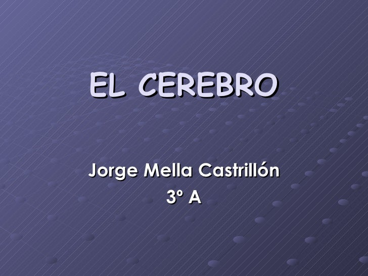 EL CEREBRO Jorge Mella Castrillón 3º A