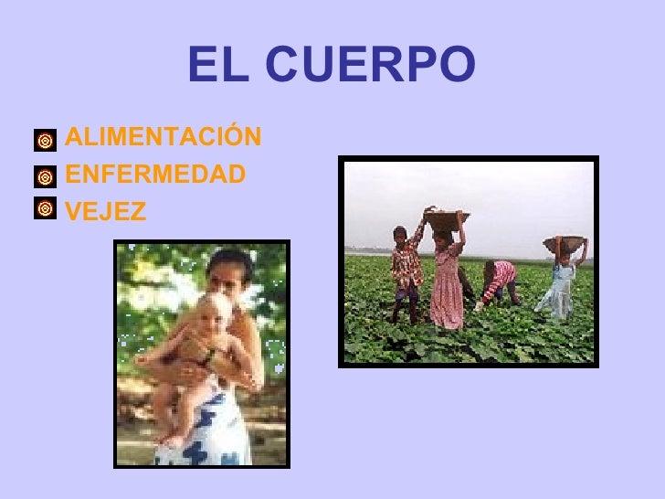 EL CUERPO <ul><li>ALIMENTACIÓN  </li></ul><ul><li>ENFERMEDAD </li></ul><ul><li>VEJEZ </li></ul>