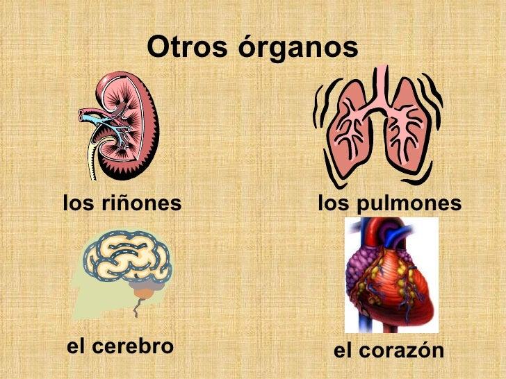 La osteocondrosis sheynogo del departamento con tsefalgicheskim por el síndrome