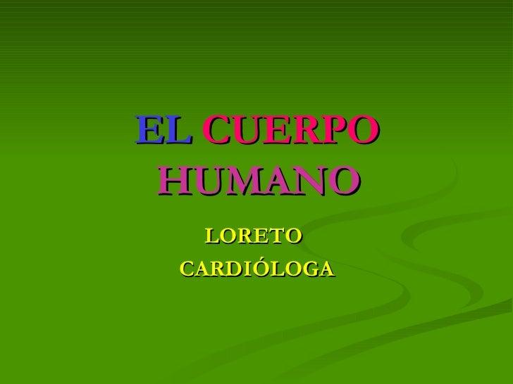 EL   CUERPO  HUMANO LORETO  CARDIÓLOGA