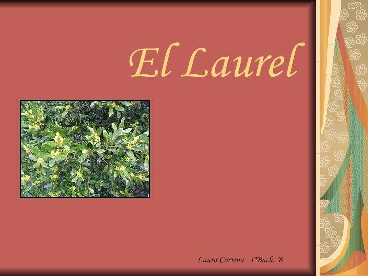 El Laurel Laura Cortina  1ºBach. B