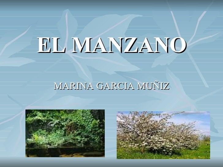 EL MANZANO MARINA GARCIA MUÑIZ