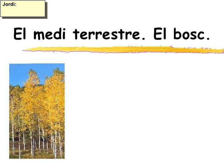 El medi terrestre. El bosc. Jordi: