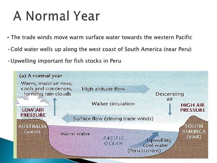 <ul><li>The trade winds move warm surface water towards the western Pacific </li></ul><ul><li>Cold water wells up along th...