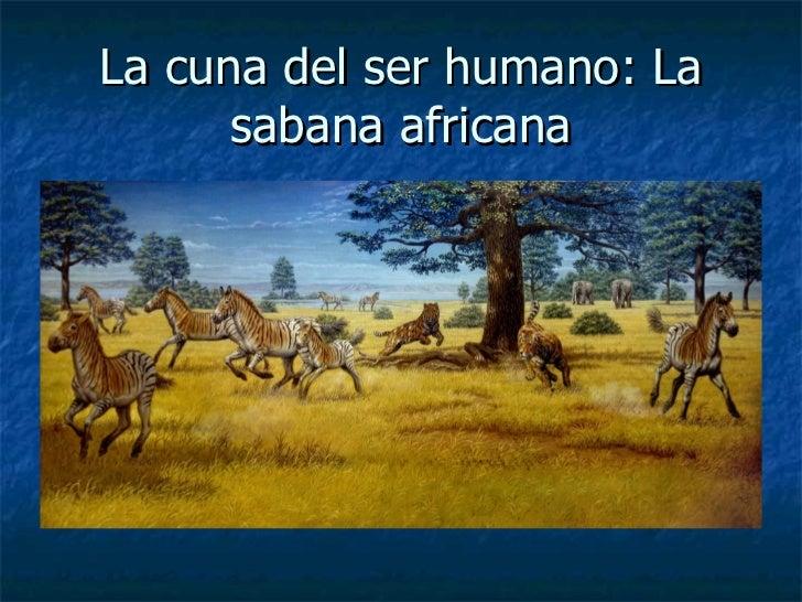 La cuna del ser humano: La sabana africana