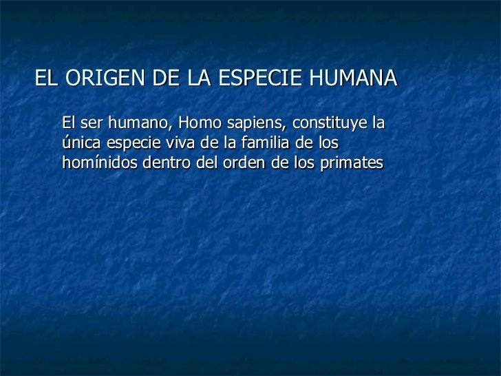 EL ORIGEN DE LA ESPECIE HUMANA El ser humano, Homo sapiens, constituye la única especie viva de la familia de los homínido...