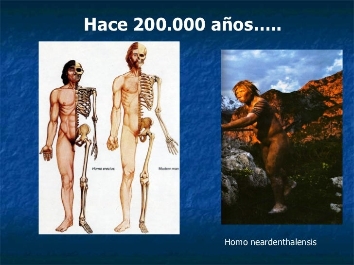 Homo neardenthalensis Hace 200.000 años…..