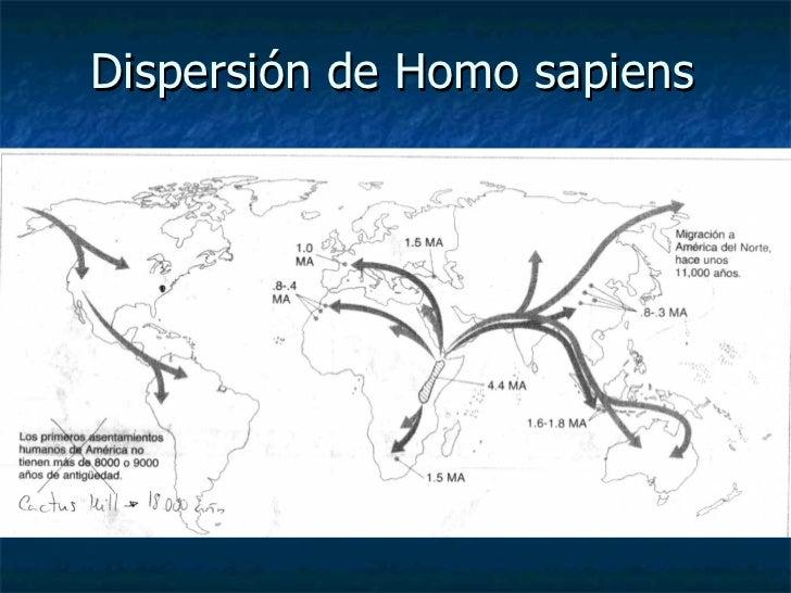Dispersión de Homo sapiens