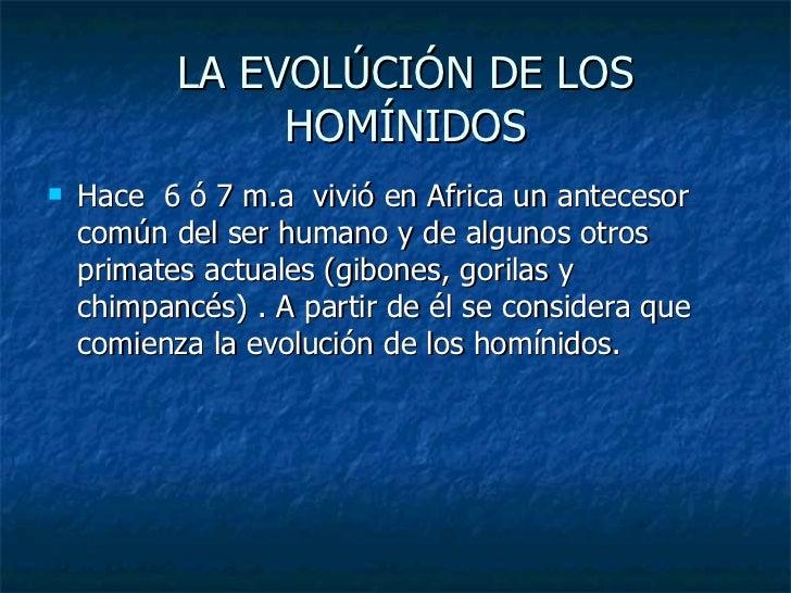 LA EVOLÚCIÓN DE LOS HOMÍNIDOS <ul><li>Hace  6 ó 7 m.a  vivió en Africa un antecesor común del ser humano y de algunos otro...