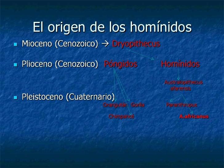El origen de los homínidos
