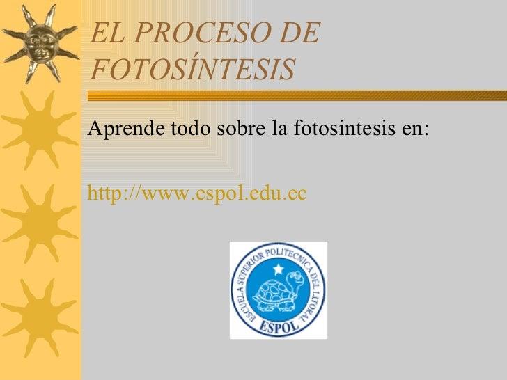 EL PROCESO DE  FOTOSÍNTESIS <ul><li>Aprende todo sobre la fotosintesis en: </li></ul><ul><li>http://www.espol.edu.ec </li>...