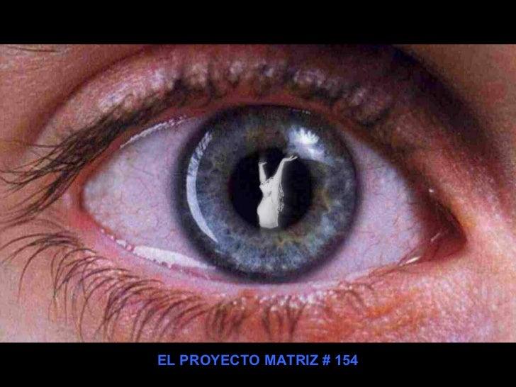 EL PROYECTO MATRIZ # 154