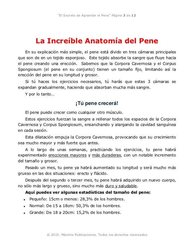 peneperfecto manual gratis