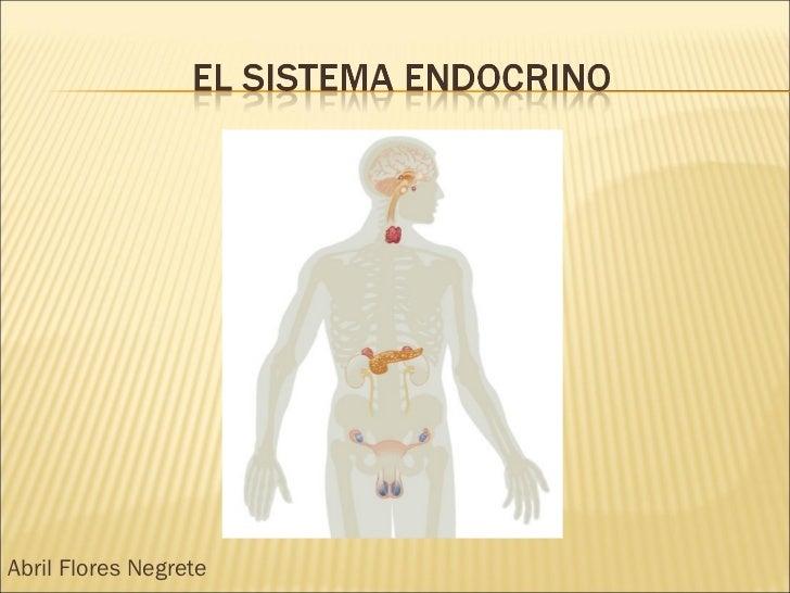 el-sistema-endocrino-1-728.jpg?cb=1224372524