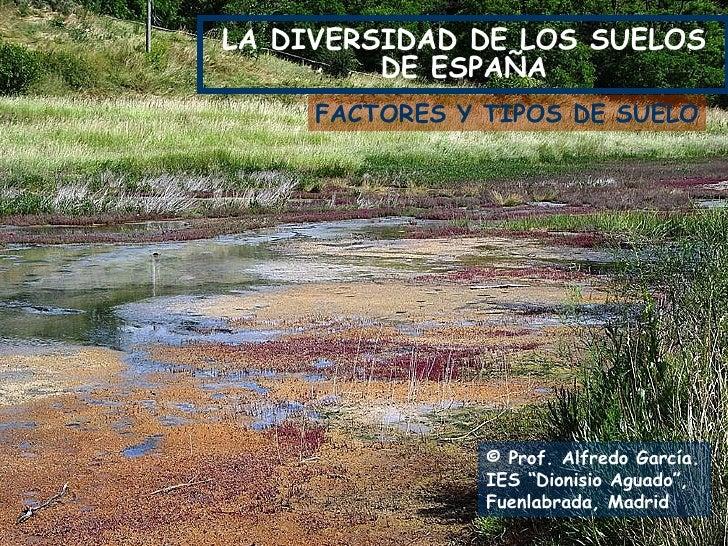 """LA DIVERSIDAD DE LOS SUELOS DE ESPAÑA © Prof. Alfredo García. IES """"Dionisio Aguado"""", Fuenlabrada, Madrid FACTORES Y TIPOS ..."""