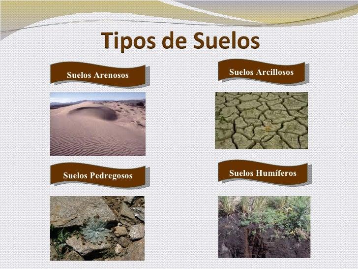 El suelo - Tipos de suelos para pisos ...
