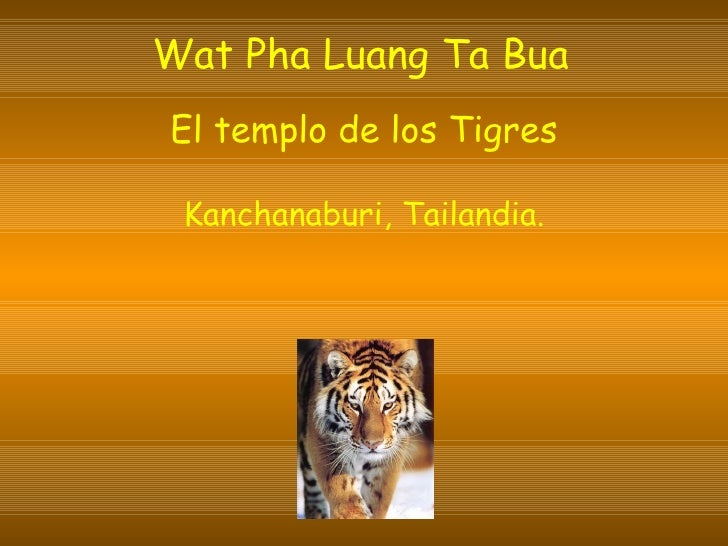 Wat Pha Luang Ta Bua   El templo de los Tigres Kanchanaburi, Tailandia.