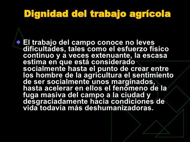 Dignidad del trabajo agrícola  <ul><li>El trabajo del campo conoce no leves dificultades, tales como el esfuerzo físico co...