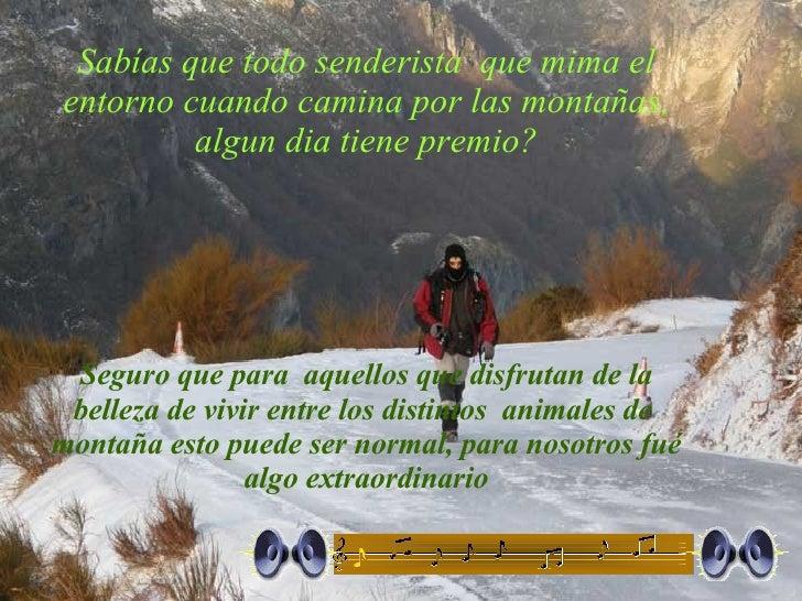 Sabías que todo senderista  que mima el entorno cuando camina por las montañas, algun dia tiene premio? Seguro que para  a...