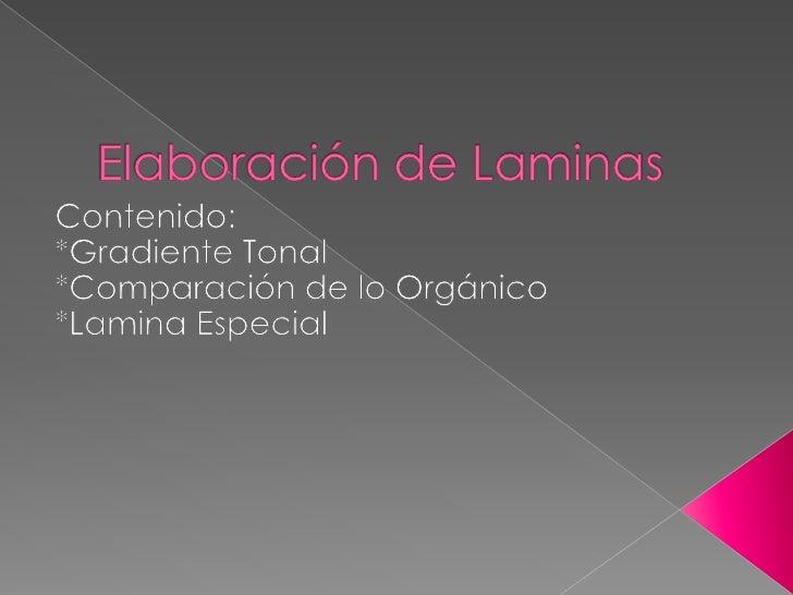 Elaboración de Laminas<br />Contenido:<br />*Gradiente Tonal<br />*Comparación de lo Orgánico<br />*Lamina Especial<br />