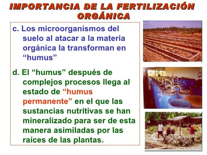 Elaboracion de abonos organicos for Importancia de los suelos