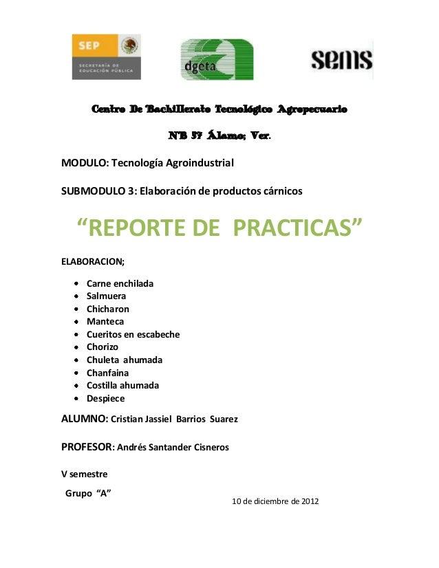 Centro De Bachillerato Tecnológico Agropecuario                       N° 57 Álamo; Ver.MODULO: Tecnología AgroindustrialSU...