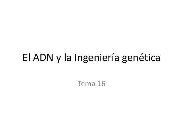 El ADN y la Ingeniería genética<br />Tema 16<br />