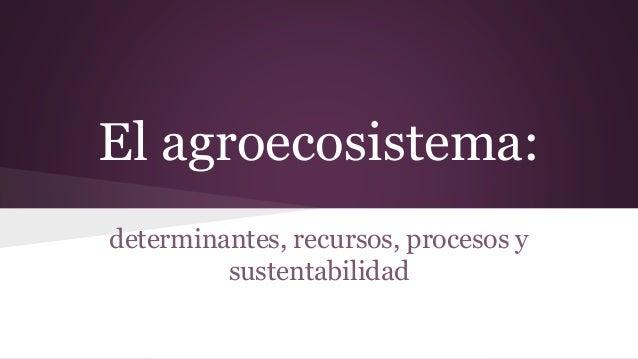 El agroecosistema: determinantes, recursos, procesos y sustentabilidad