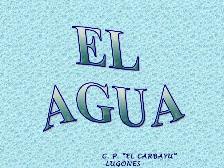 """EL AGUA C. P. """"EL CARBAYU""""  -LUGONES-  CURSO: 2010 - 2011"""
