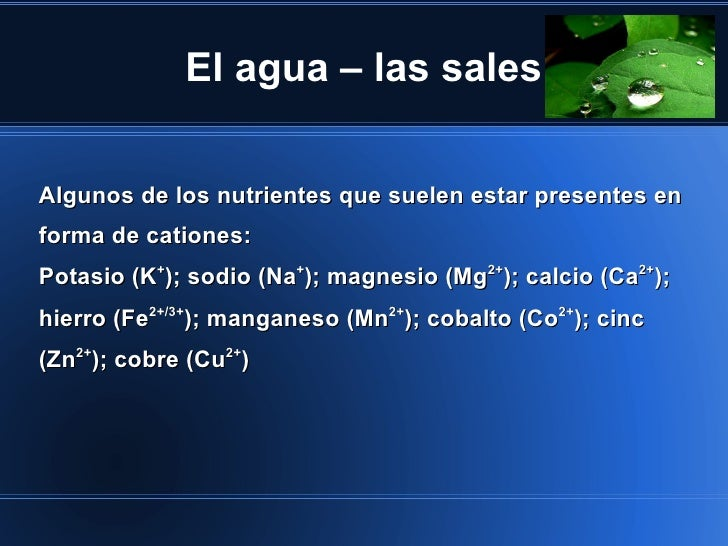 El agua – las salesAlgunos de los nutrientes que suelen estar presentes enforma de cationes:Potasio (K+); sodio (Na+); mag...