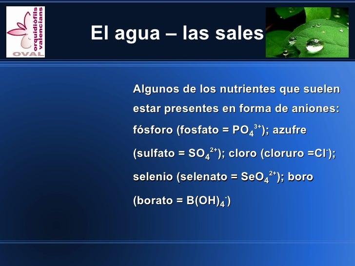 El agua – las sales    Algunos de los nutrientes que suelen    estar presentes en forma de aniones:    fósforo (fosfato = ...